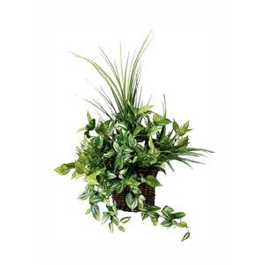 光の楽園【光触媒/人工観葉植物】壁掛けナチュラルグラス