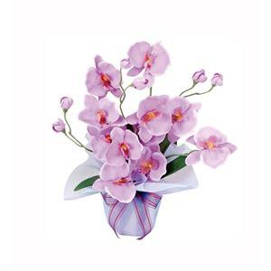 光の楽園【光触媒/アートフラワー/造花】ホットファレノ