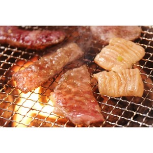 アメリカ産牛カルビ 焼肉用 500g