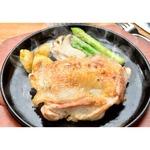ブラジル産 鶏モモ肉 【5kg】 小分けタイプ 1パック500g入り 精肉 〔ホームパーティー 家呑み バーベキュー〕