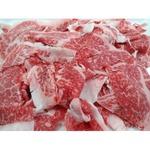 仙台牛 牛肉 【切り落とし 3kg】 A5ランク 精肉 霜降り 〔ホームパーティー 家呑み バーベキュー〕