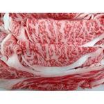 仙台牛 牛肉 【肩ローススライス 1kg】 A5ランク 精肉 霜降り 〔ホームパーティー 家呑み バーベキュー〕