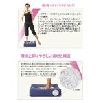 体幹トレーニング/フィットネス器具 【エクササイズDVD付き】 体幹強化 筋力アップ 『コアムーブ』