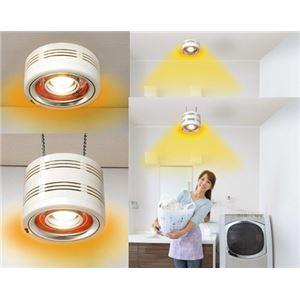 ヒーター内蔵型天井照明・pocapica2 2種 半埋め込み型(P14P04D)