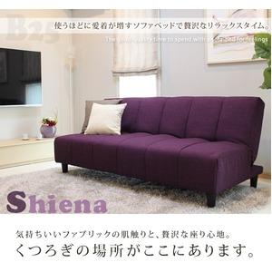 ソファーベッド 【シングルサイズ】 ファブリック布地 背もたれ3段階リクライニング 座面厚約30cm 『シエナ』 パープル(紫)