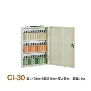 キーボックス/鍵収納箱 【携帯・壁掛兼用/30個掛け】 スチール製 タチバナ製作所 Ci-30