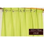 カラーレースカーテン 2枚組 100×176 グリーン ミラーレース 見えにくい 洗える アジャスターフック付き セルバ2