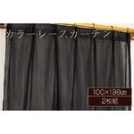 カラーレースカーテン 2枚組 100×198 ブラック ミラーレース 見えにくい 洗える アジャスターフック付き セルバ2