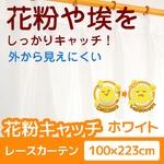 花粉キャッチ レースカーテン 2枚組 【100cm×223cm ホワイト】 防汚加工 洗える アジャスターフック付き 『アスル』