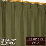 遮光カーテン/サンシェード 2枚組 【100cm×200cm ダークグリーン】 無地 タッセル付き アジャスターフック付き 『エクセル』