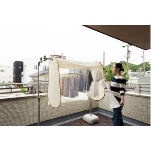 洗濯日和ネクスト(レギュラーサイズ)