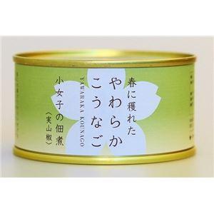 木の屋石巻水産缶詰 小女子の佃煮(実山椒) 6缶セット
