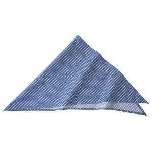 ストライプ三角巾 ブルー KMB2941-22