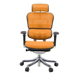 オフィスチェア アームレスト付き ランバーサポート付き Ergohuman PRO (エルゴヒューマンプロ ) ハイタイプ オレンジ