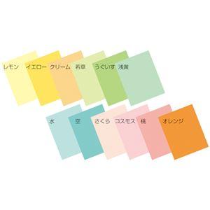 (業務用2セット) エイピーピー シナールカラー B4 薄口 1000枚 浅黄