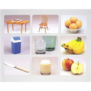 DLM 言語訓練写真カード2 食物と家具1245S