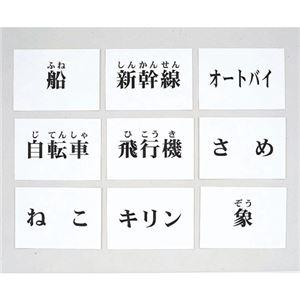 DLM 言語訓練文字カード 生物・乗物 2214S-M