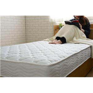 選べる収納ベッド シングル(ポケットコイルマットレス付) (ロータイプ:引出し×2)ホワイト