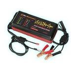 加地貿易 全自動バッテリー再生機 レディパルスチャージャー RPC-12