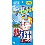 小林製薬 冷凍庫用 熱さまシートストロング 大人用 12枚 × 3 点セット