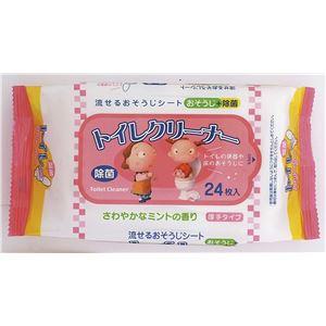 ペーパーテック ミントの香りのトイレクリーナー24枚 × 30 点セット