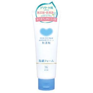 牛乳石鹸共進社 カウブランド 無添加洗顔フォーム 120g × 6 点セット