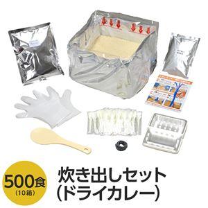 アルファ米炊出しセットドライカレー500食分 〔非常食 企業備蓄 防災用品〕