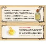 北海道山奥の蜂蜜 【アカシアハチミツ 10個セット】 国産 生はちみつ 常温で製造から2年