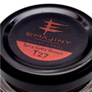 EMAJINY ヘアカラーワックス Terra Cotta Brown T27