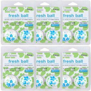 フレッシュボール フラワーフリージア 6個セット