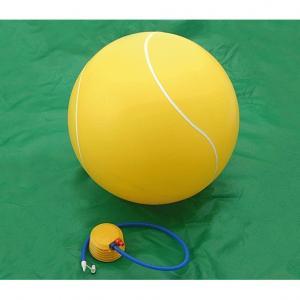 バランスボール テニスボール
