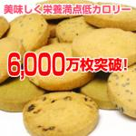 NEW豆乳おからクッキー 8種類セット