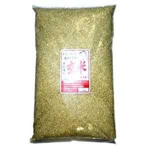 無洗米 卑弥呼玄米5kg