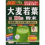 大麦若葉粉末100% (シェーカー付) 170g