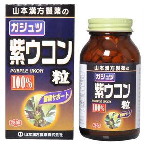 カジュツ紫ウコン粒100% 280粒