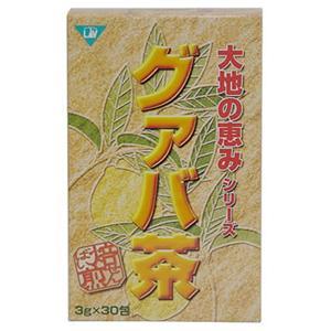 大地の恵み グアバ茶